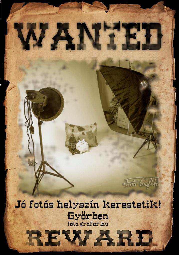 wanted-fotoshelyszin